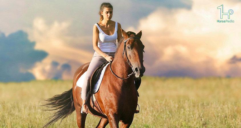 ۱۰ سوال رایج در مورد سوارکاری با اسب