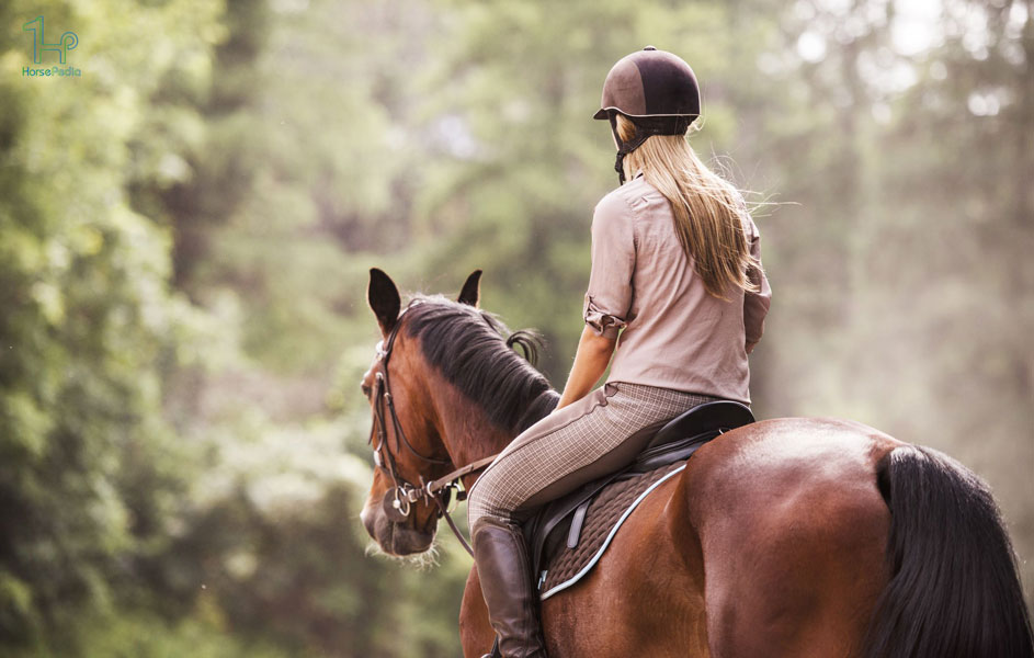 نحوه صحیح نشستن روی زین اسب