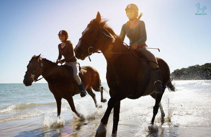 ۱۰ مورد از فواید سوارکاری اسب برای سلامتی